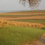 Biking scenery ~ 10 miles from my house